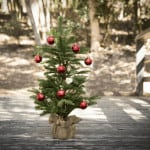 Keeping Christmas simple; how to plan intentional family activities