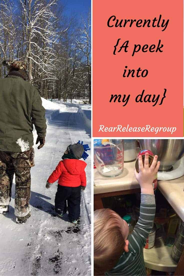 Currently {A peek into my day} How we survived Jonas and kidney stones, and the trouble with indecision.